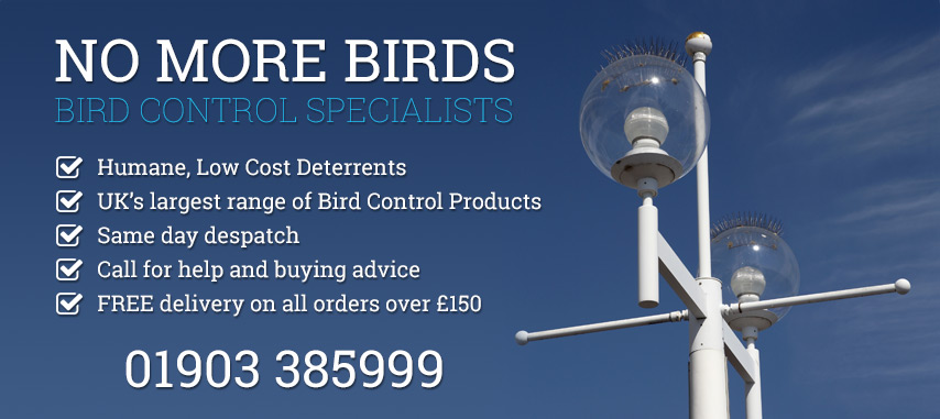 Bird Deterrents Amp Proofing Uk Amp Intl No More Birds